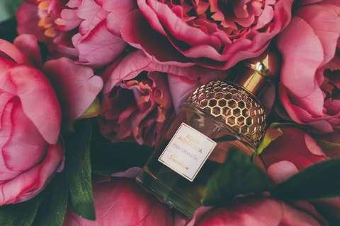 Medium bloom blooming bottle 965731  1