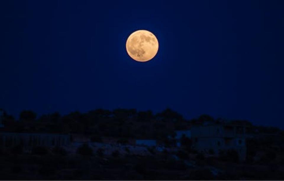 ね が 今日 綺麗 です 月 は