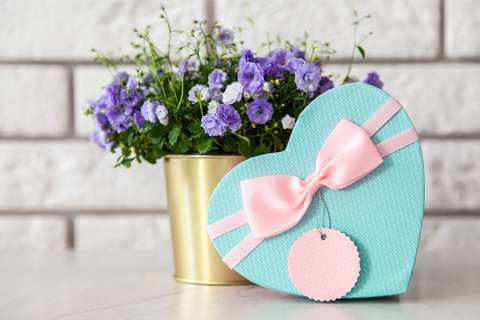 Medium gift box packaging ribbon 2072148