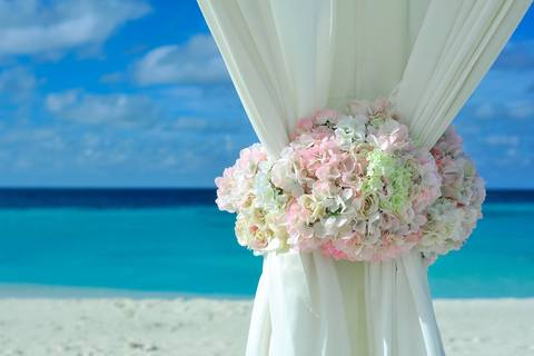 Medium beach curtain decorations 169188