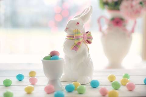 Medium bunny candy celebration 373331